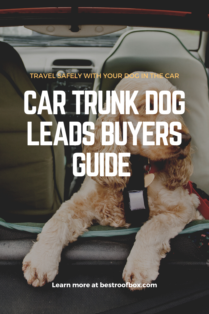 Car Trunk Dog Leads Pin